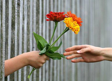 hand-1549224__340