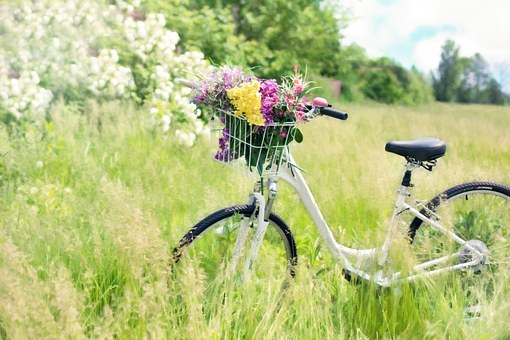 bicycle-788733__340